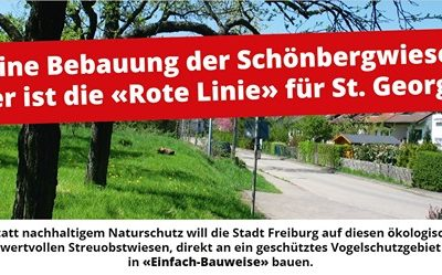 Bebauung der Schönbergwiesen